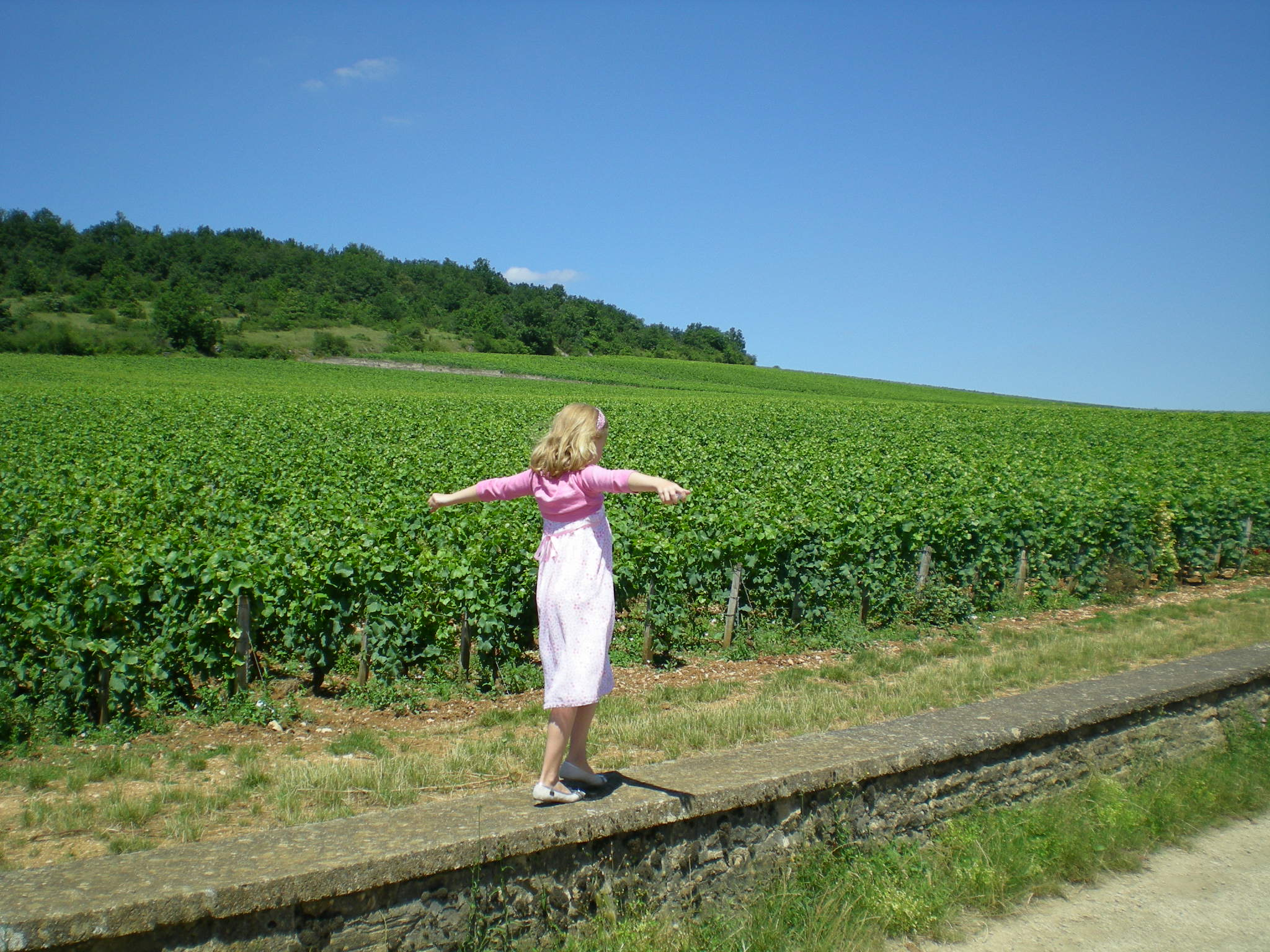 Daughter Pirrie on the wall at Musigny - 2008