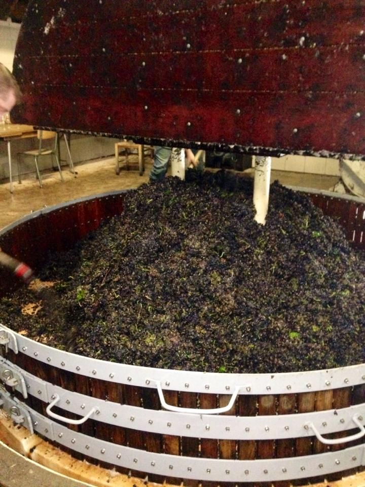 The last load in the press for 2015 at Champagne Laherte Frères