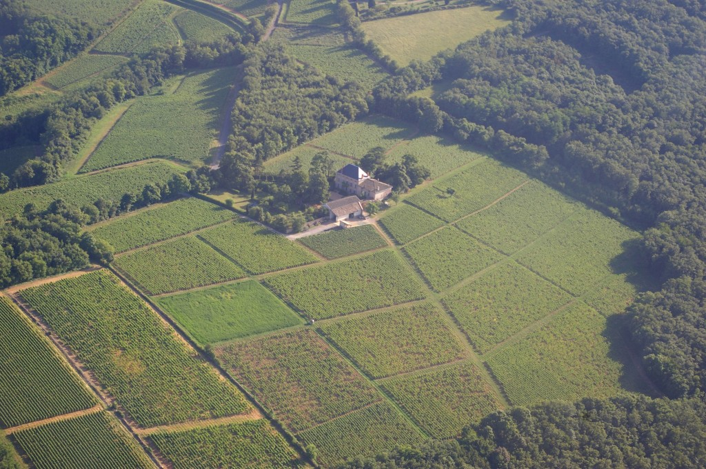 Aerial view of Chateau des Rontets and the Clos Varambon
