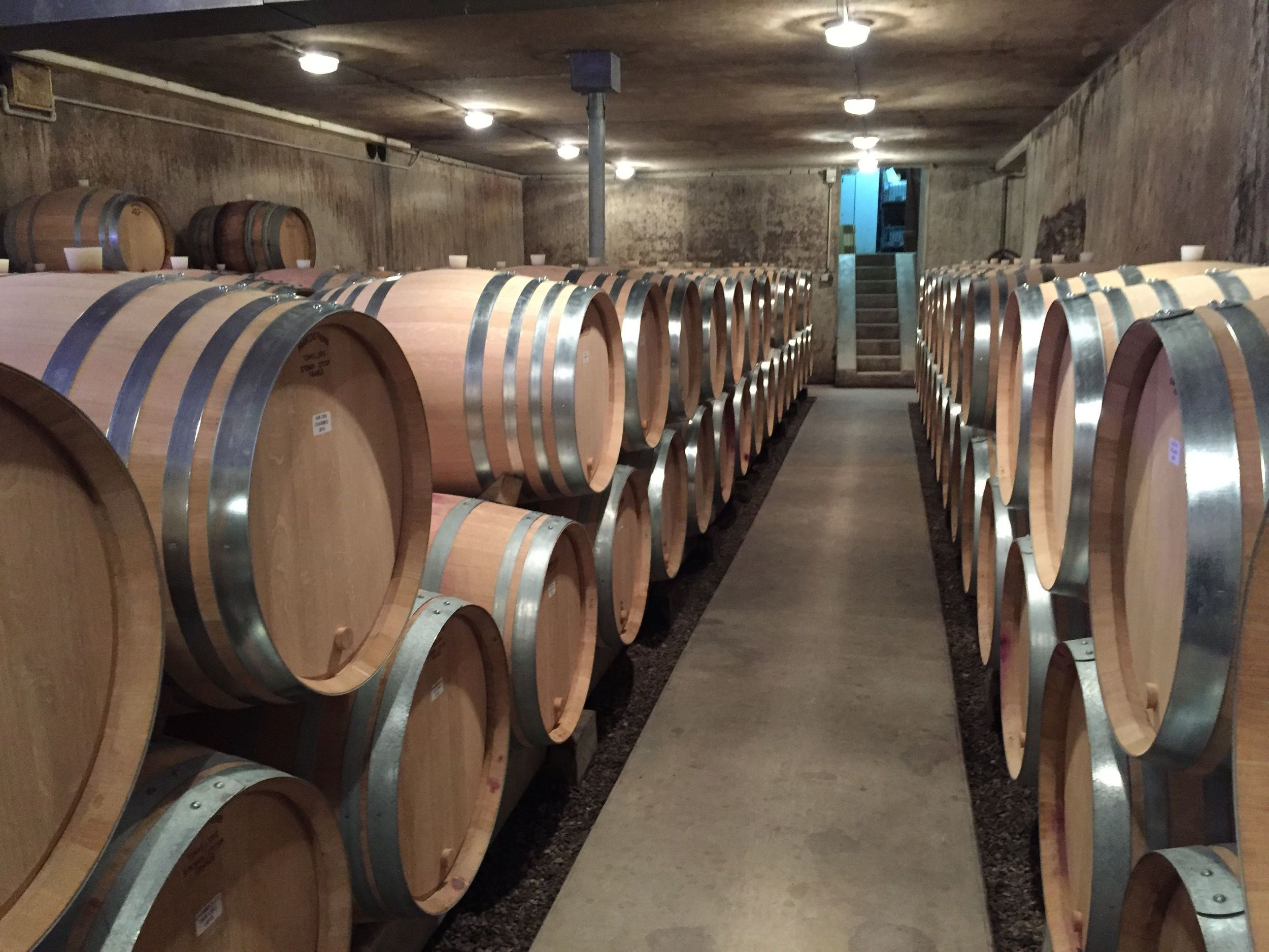 A cellar full of '14 happiness in Chambolle-Musigny