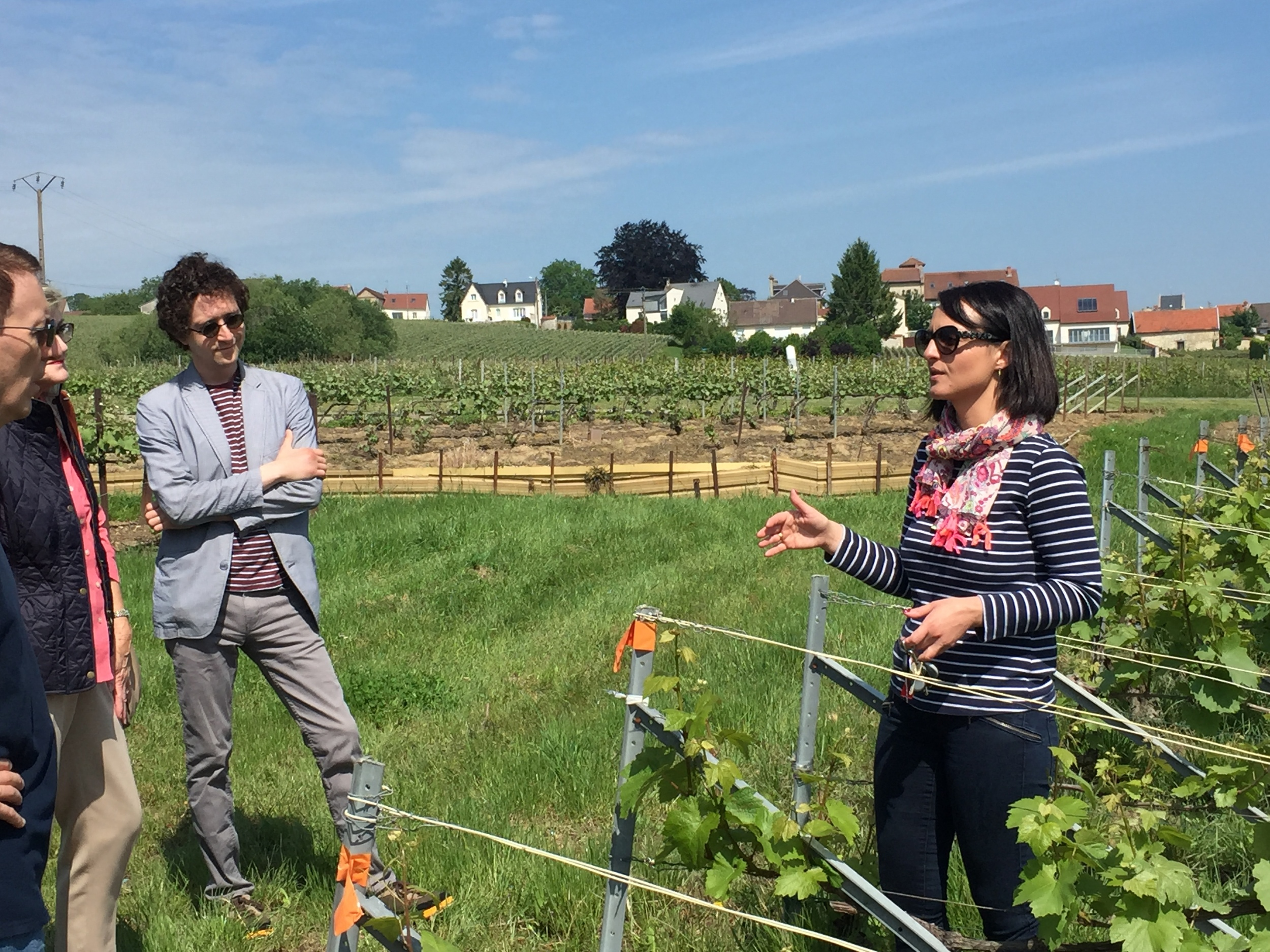 In the vines in Jouy-lès-Reims with  Sophie Cossy