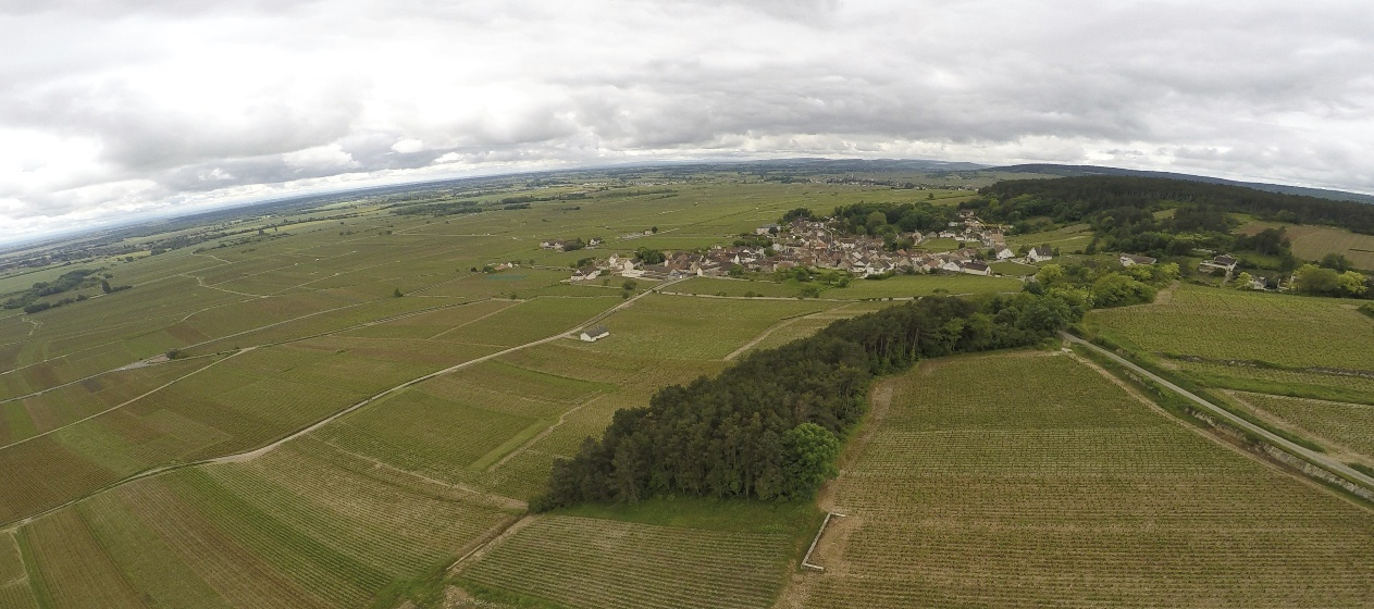 Another shot from the drone, flying over  Volnay