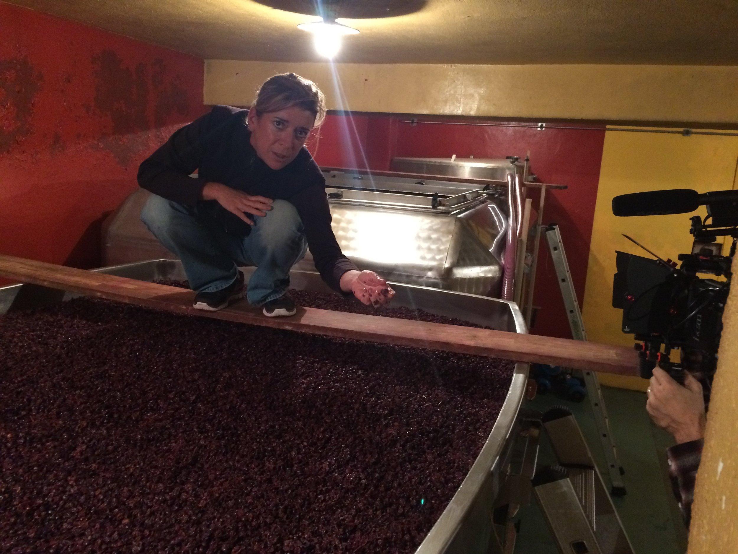 Alexandrine Roy , happy with the beautiful fruit in her tanks in Gevrey-Chambertin