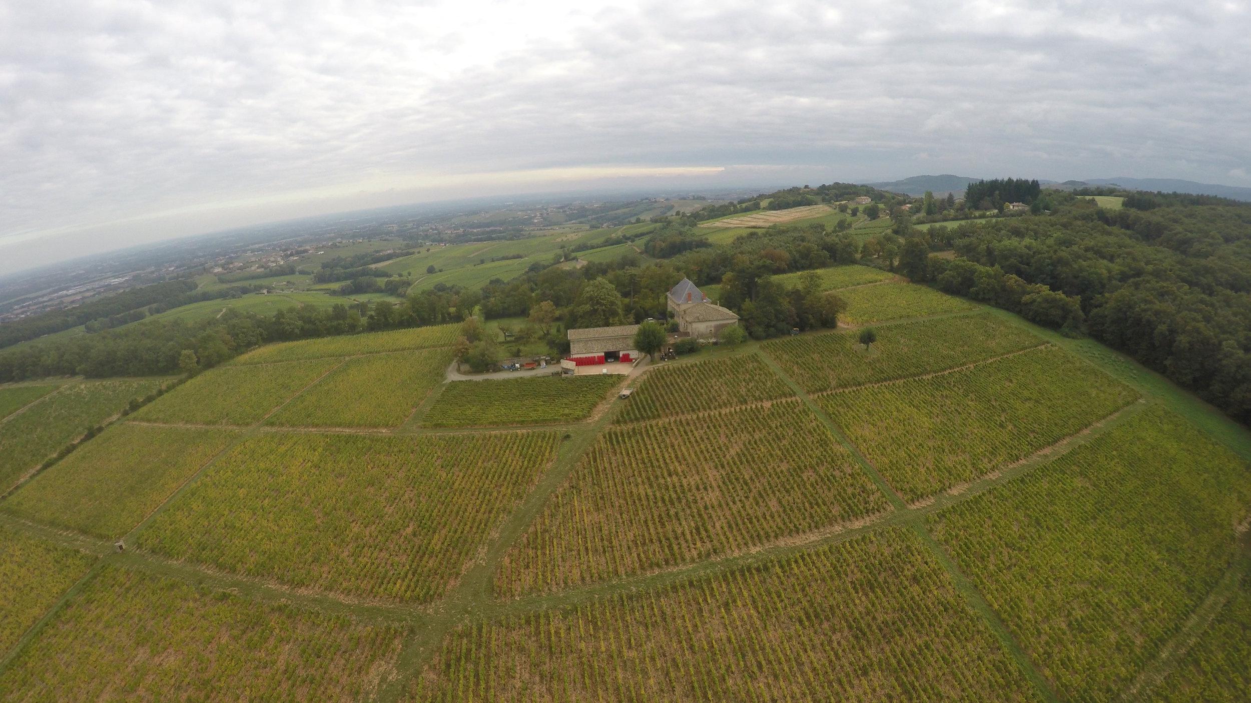 A great aerial shot of the Clos Varambon vineyard at Chateau des Rontets