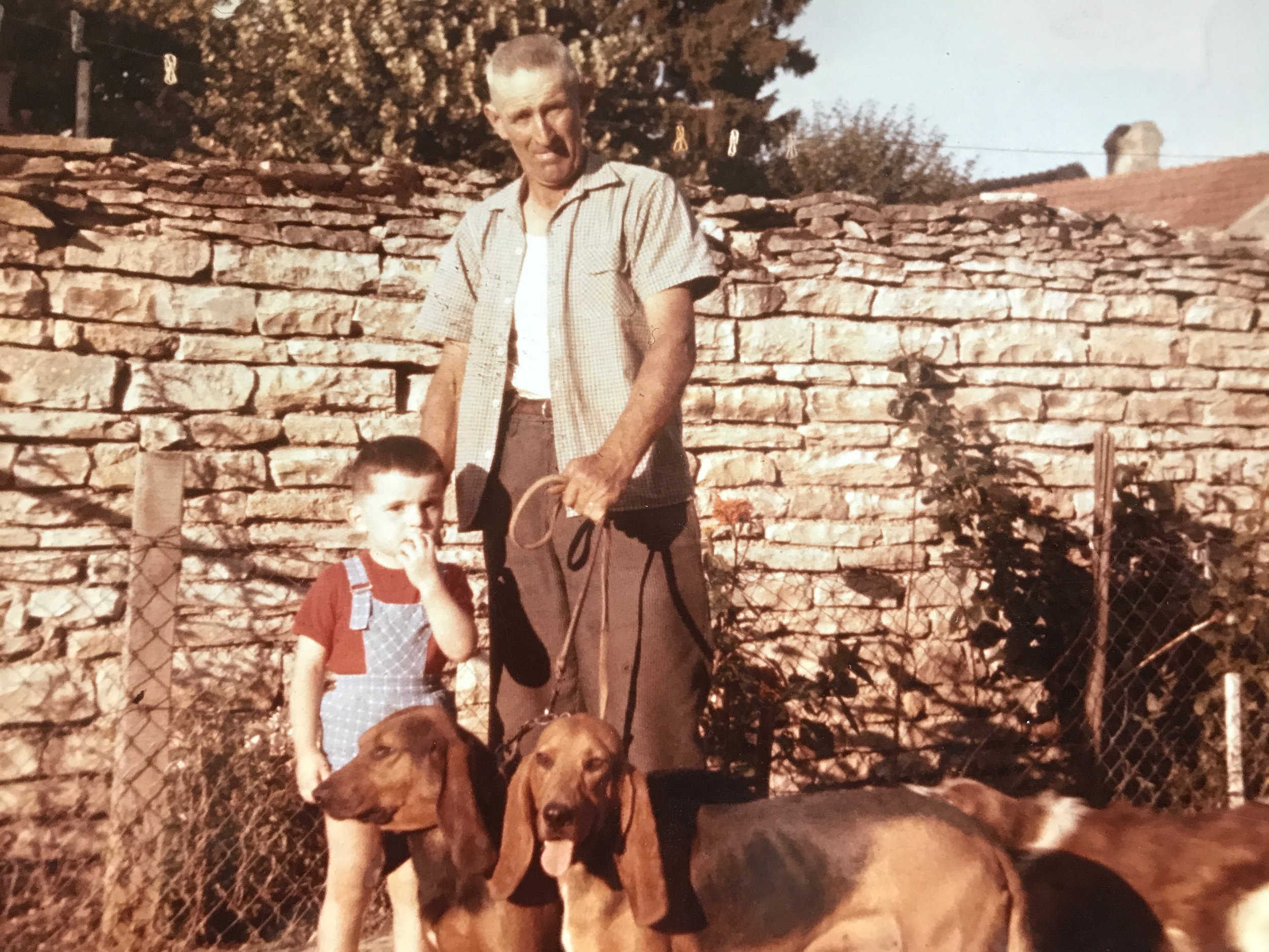 A very young  Thierry Violot-Guillemard , with his grandfather in the Clos Derrière St. Jean