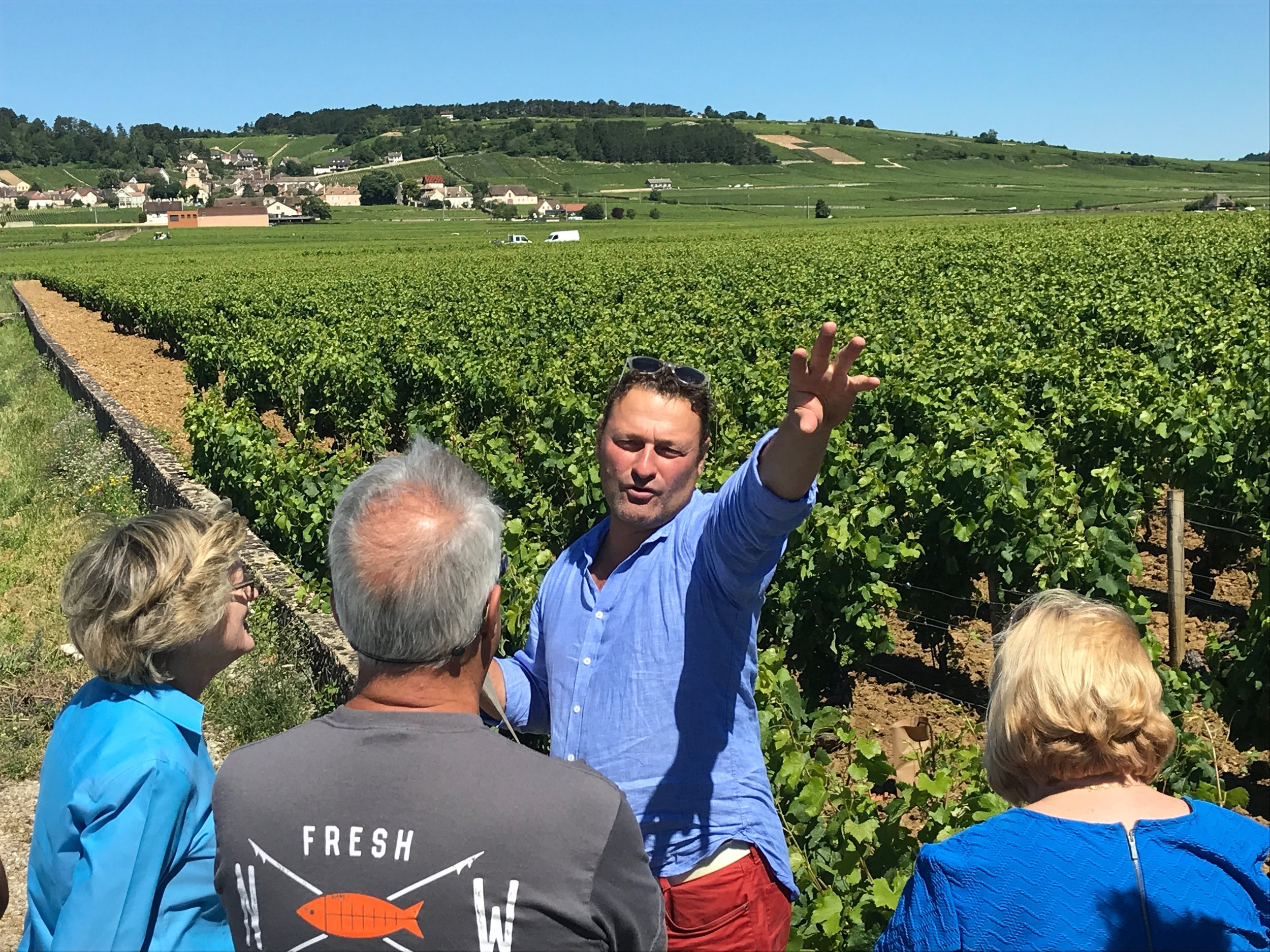 Getting a vineyard tour from  Thiébault Huber  in Volnay