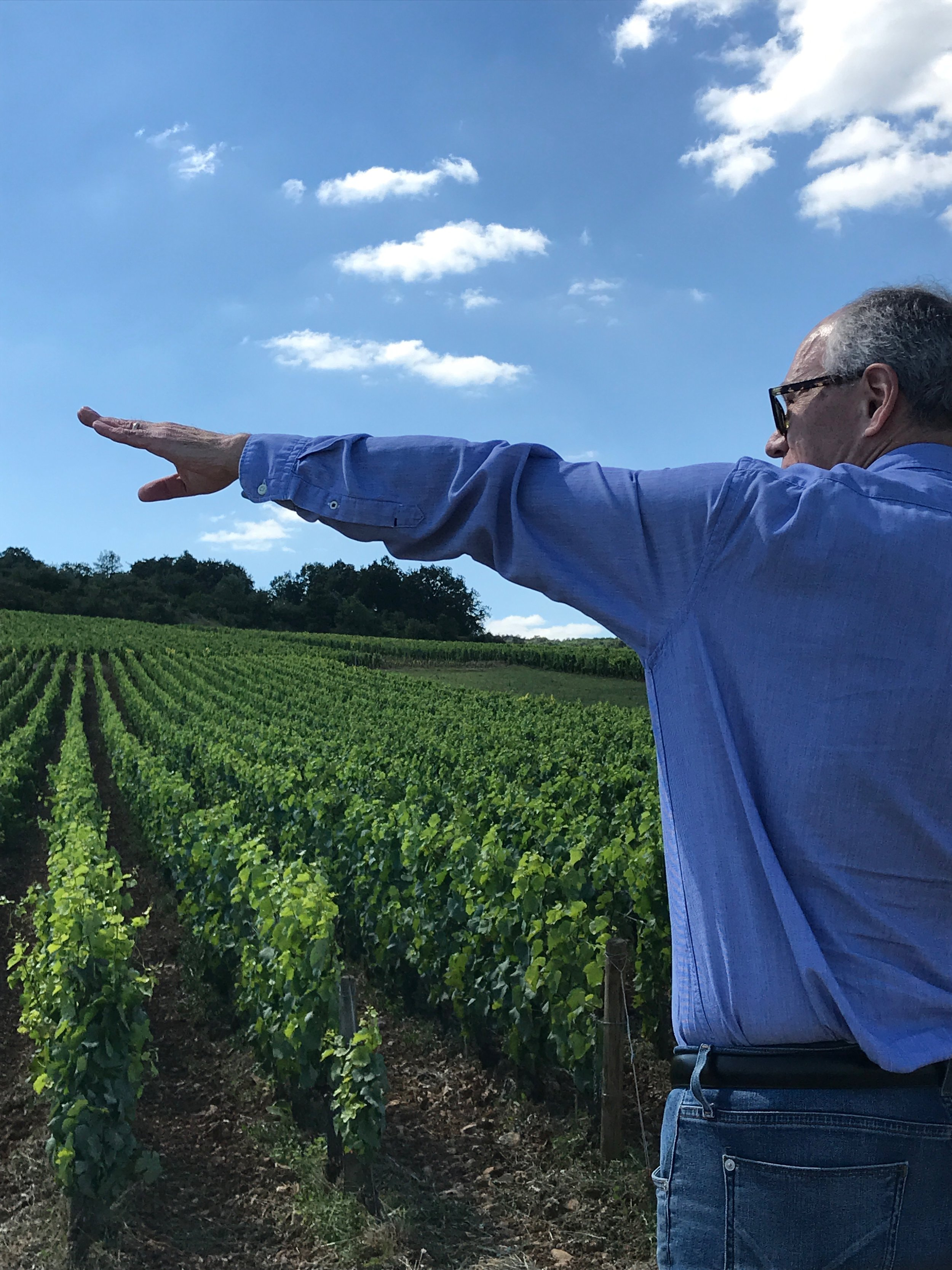 Conducting a Grand Cru vineyard tour in the Côte de Nuits - here at  Musigny