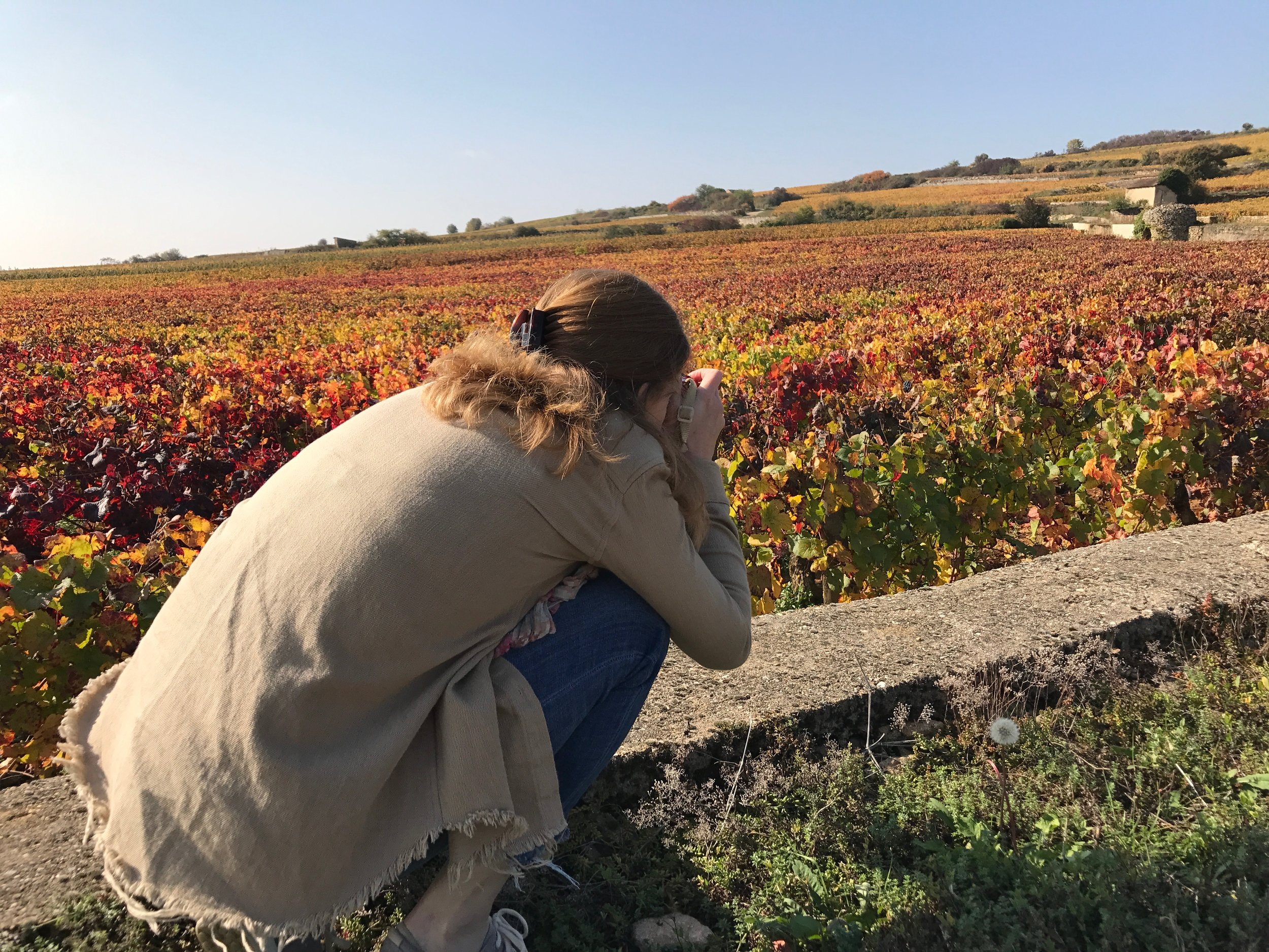 Martha, shooting the fall colors in Beaune - October 2017