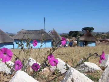 Zimbabwe2007 013.jpeg
