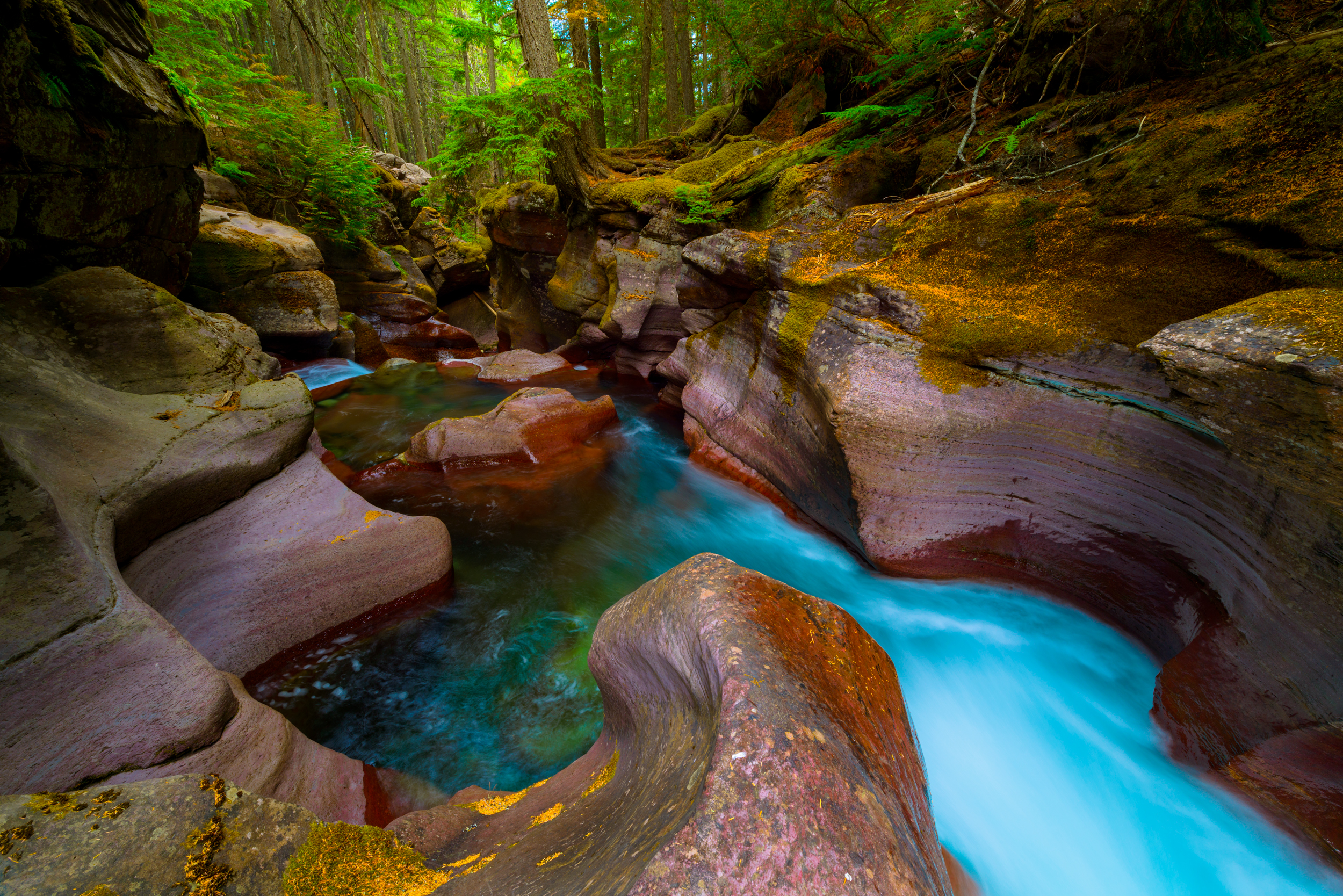 The curves of Avalanche Creek in Glacier National Park, Montana