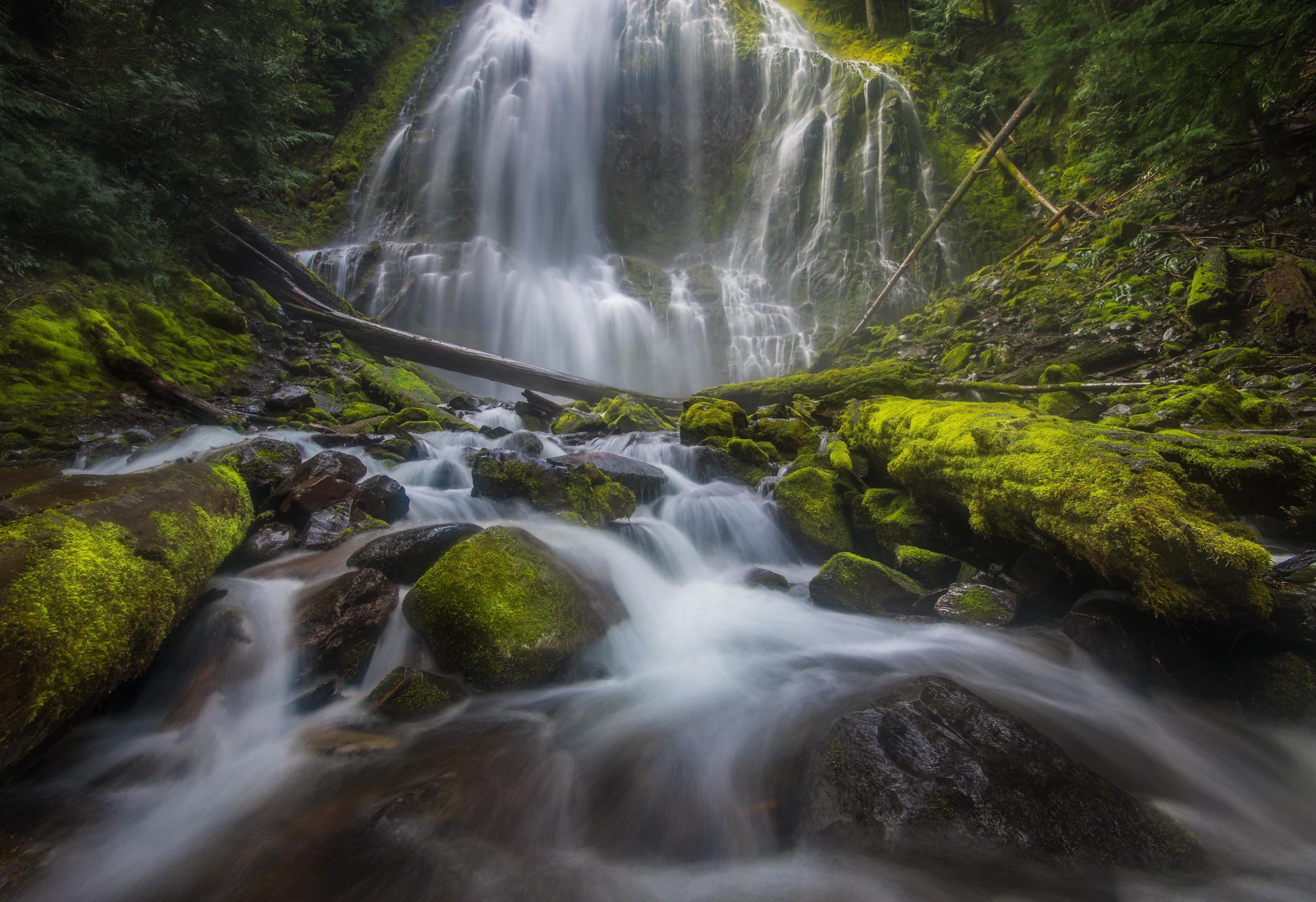 Oregon_042817._CVB9555-Edit.JPG