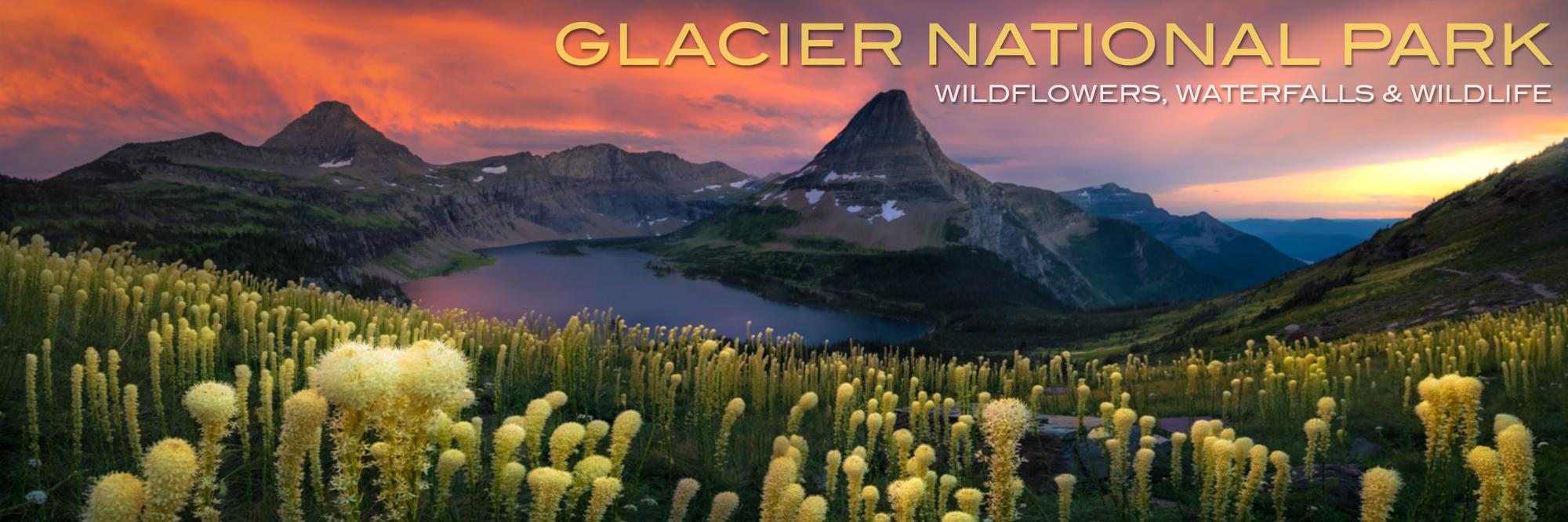 Glacier.Summer2020.BannerforWeb.jpg