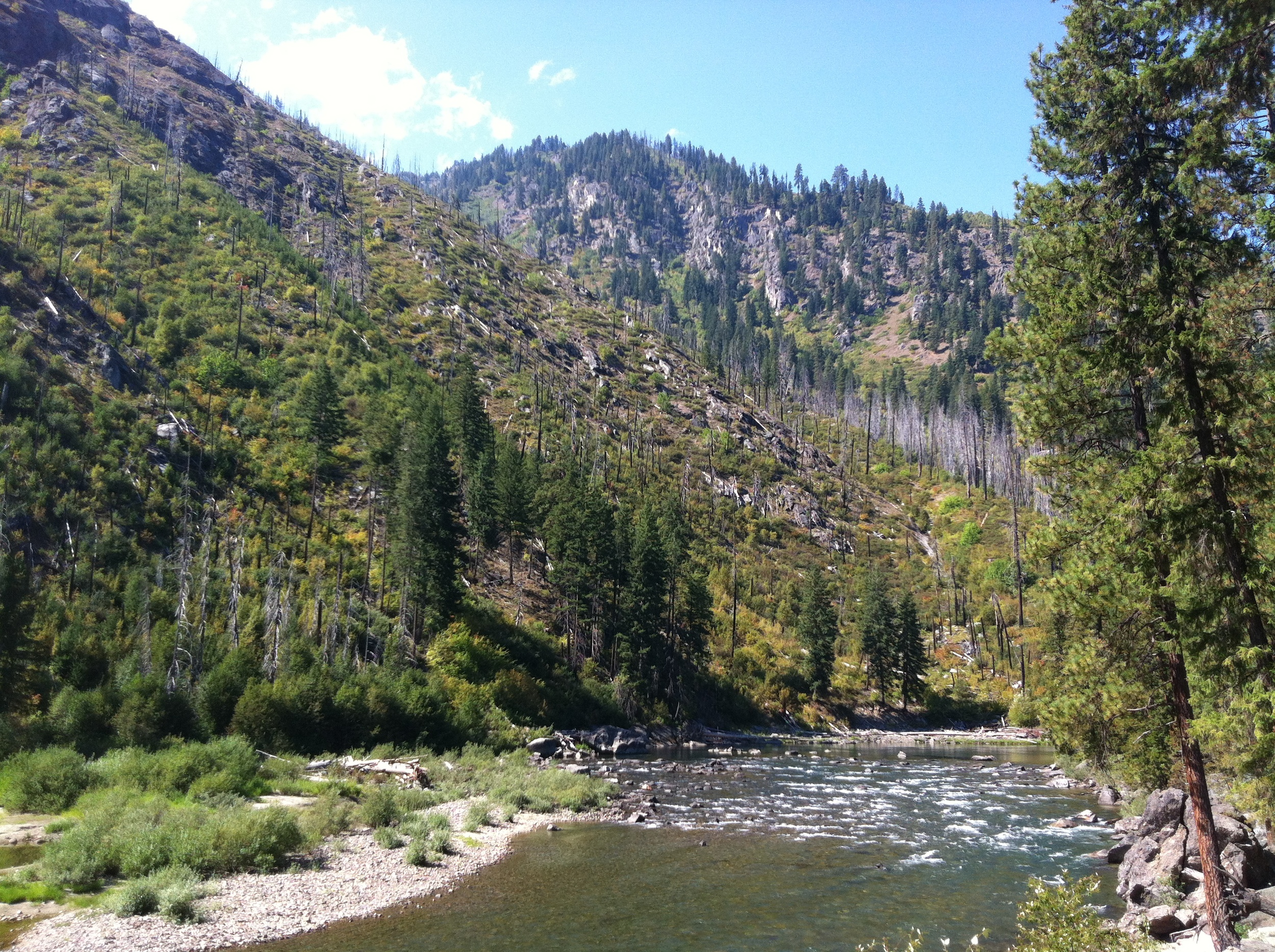 A wayside access point to the alpine Wenatchee River along U.S. Route 2.