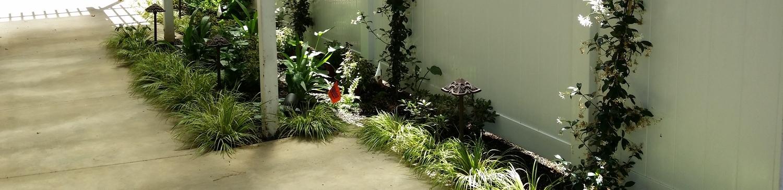 Novato Landscape installer.jpg