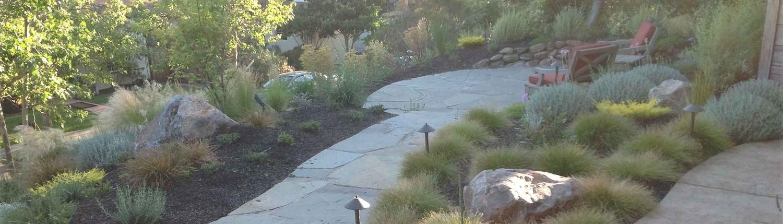Sausalito Landscape installer 18.jpg