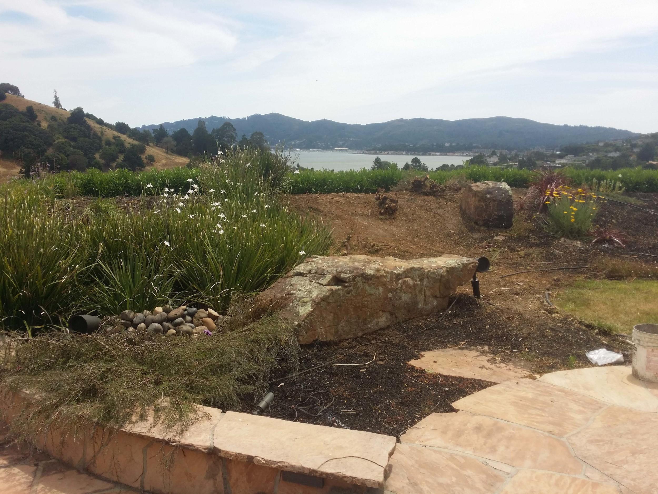 Zen Garden Design - Mill Valley Landscape Designer