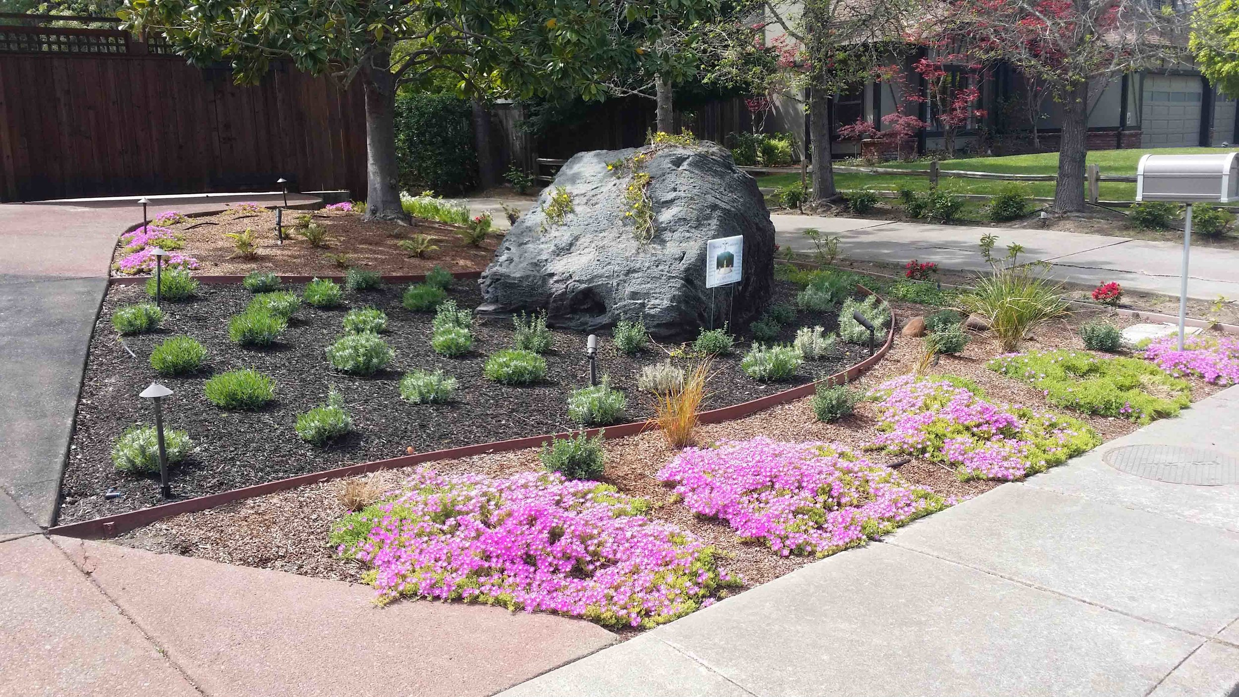 San Rafael Landscape Designer 1