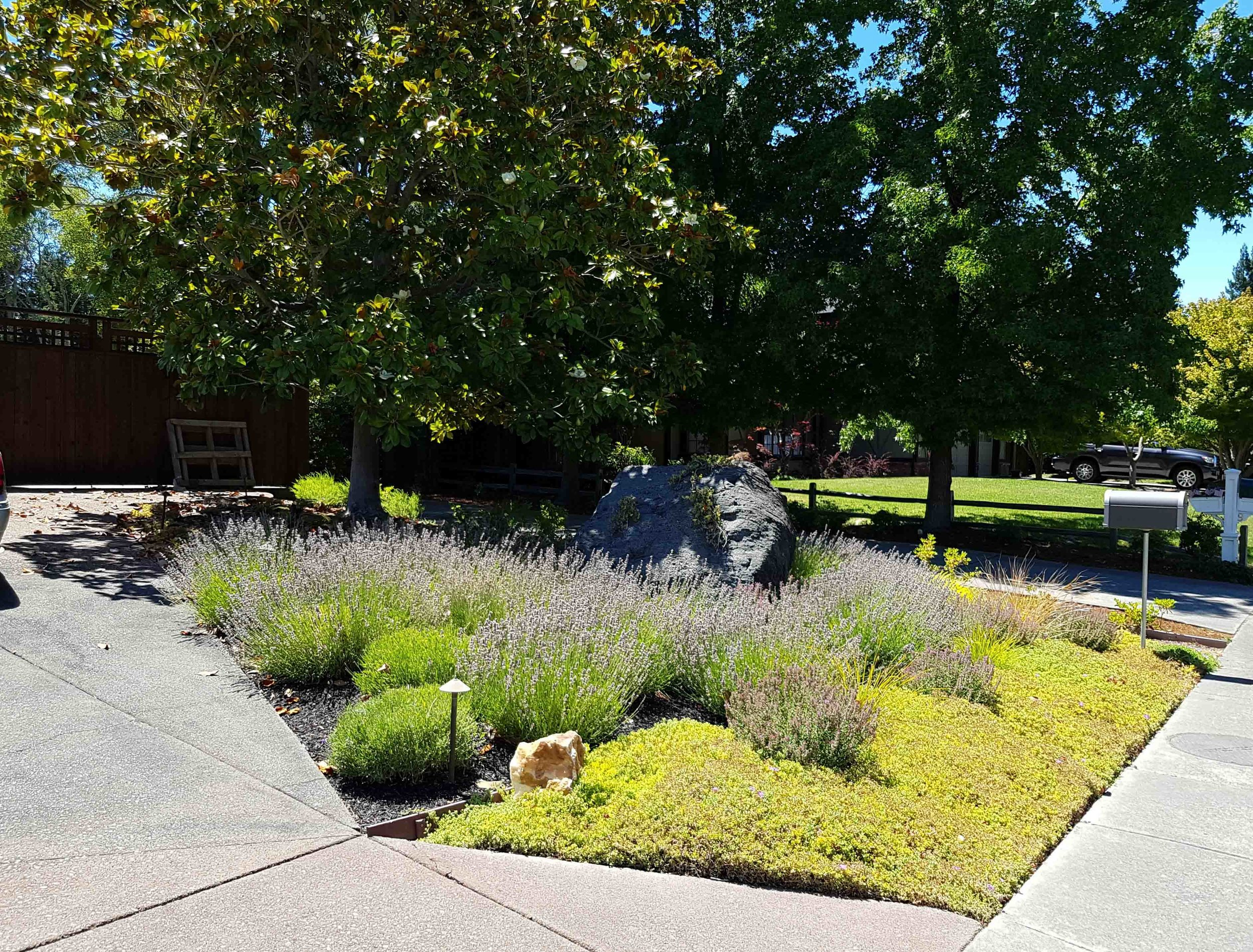 Mill Valley Landscape Contractor 2
