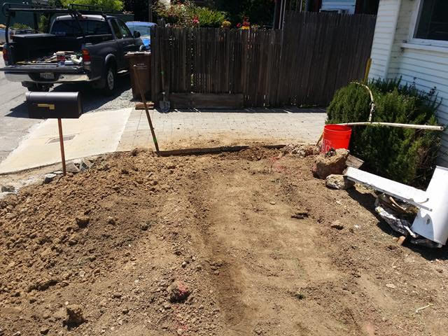 Front yard in San Rafael Design.jpg