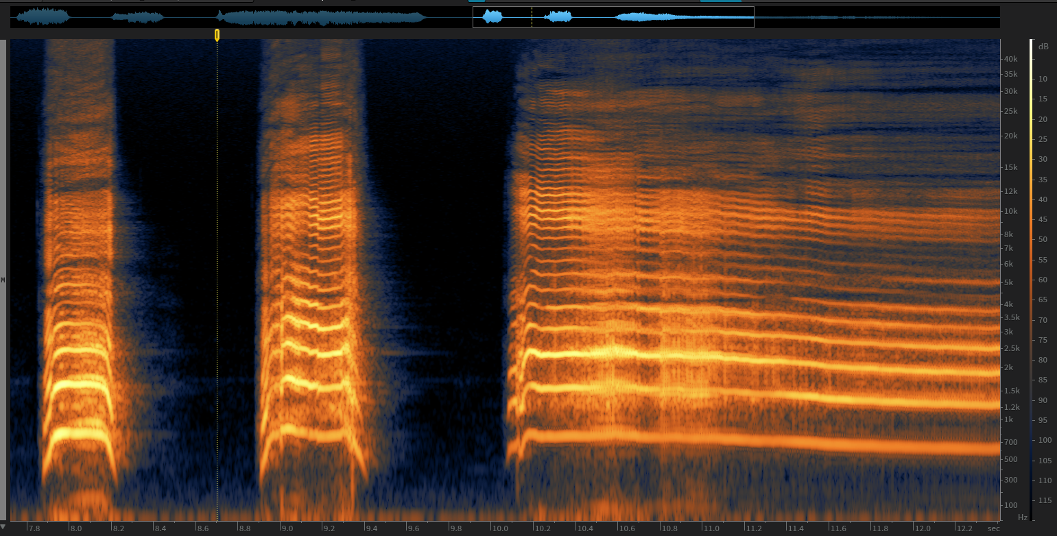 Spectogram of Male Screams with the MKH 8050 -the reverb tail of each variation is visible