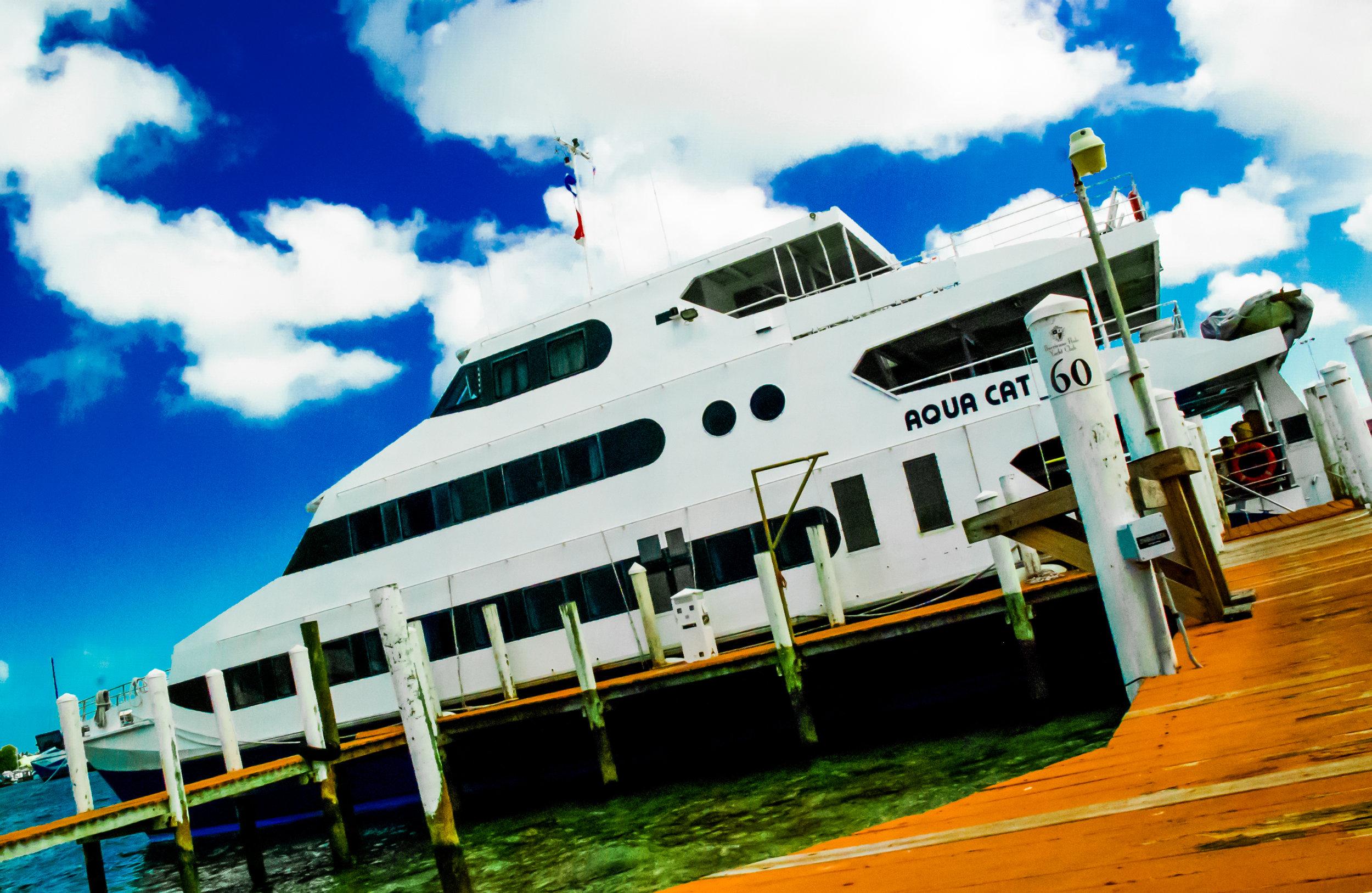 Bahamas LiveAboard CME — Wild Med Adventures