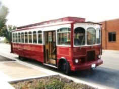 Trolley 2 - Coll Doll