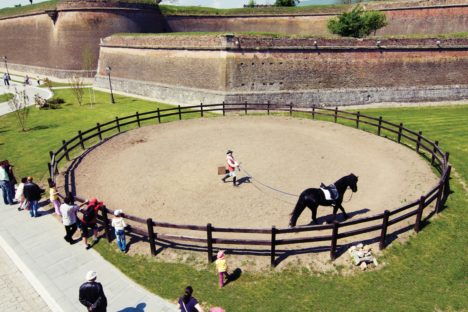 Horse riding in the Citadel