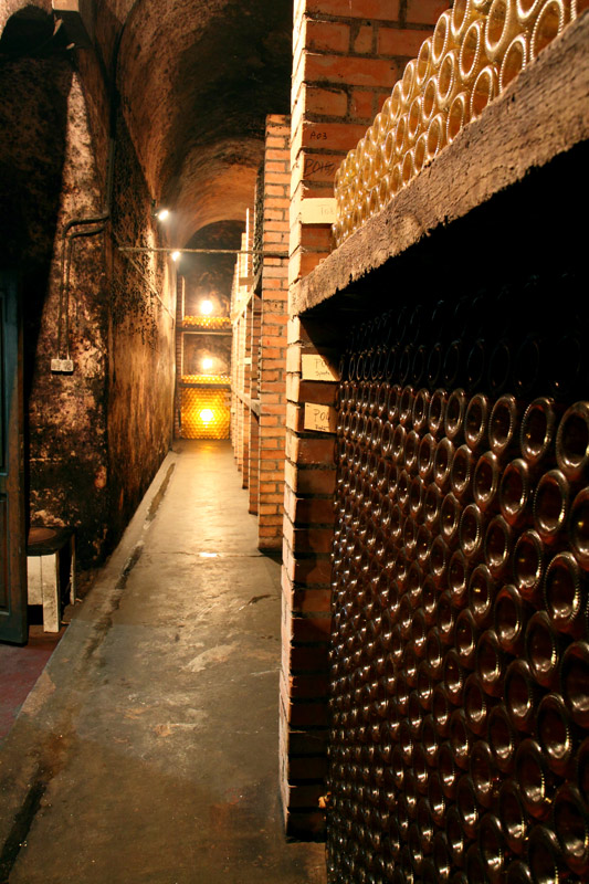 Wine cellars from Transylvania's Weinland