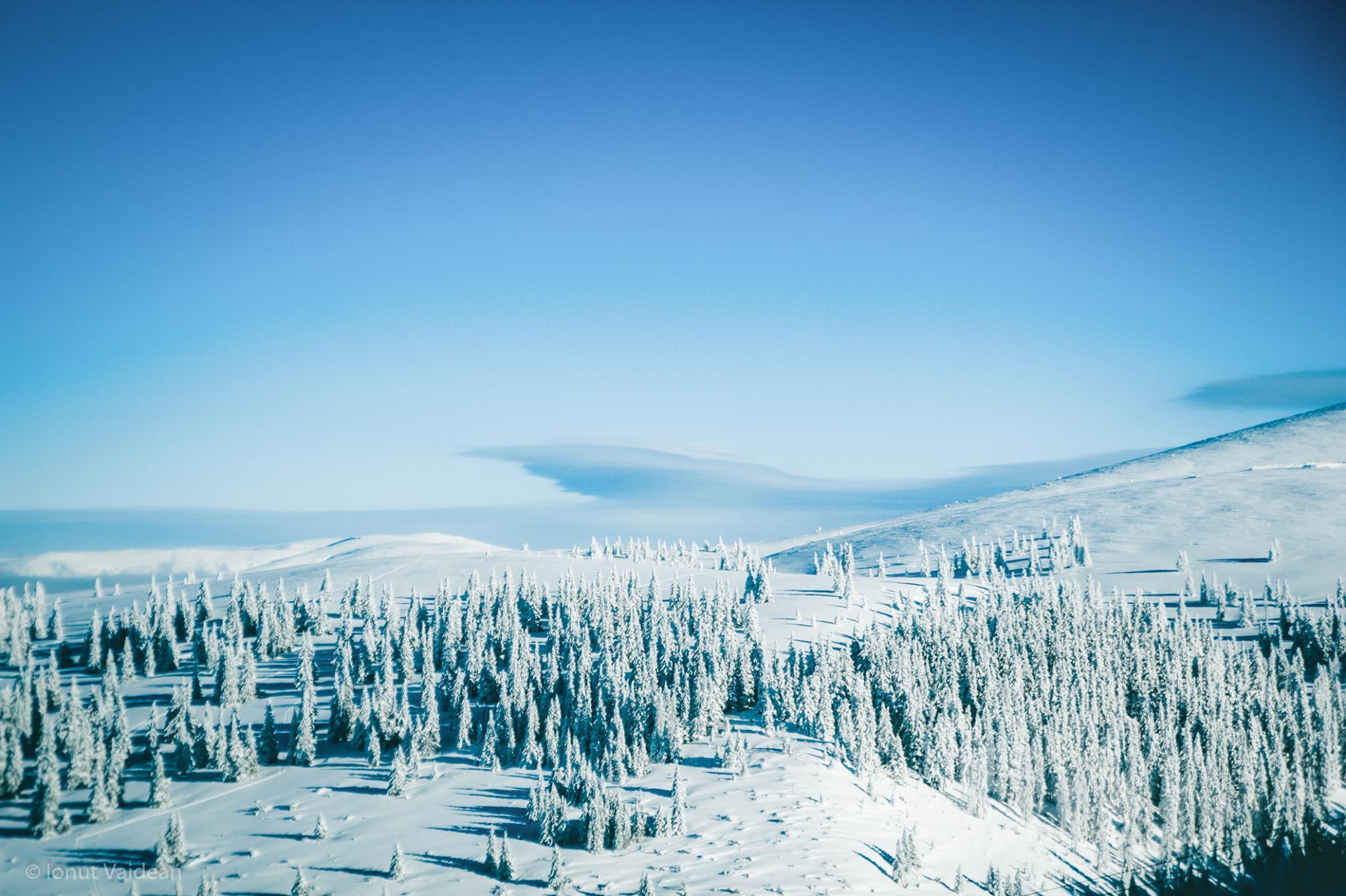 Photo: Ionut Vaidean