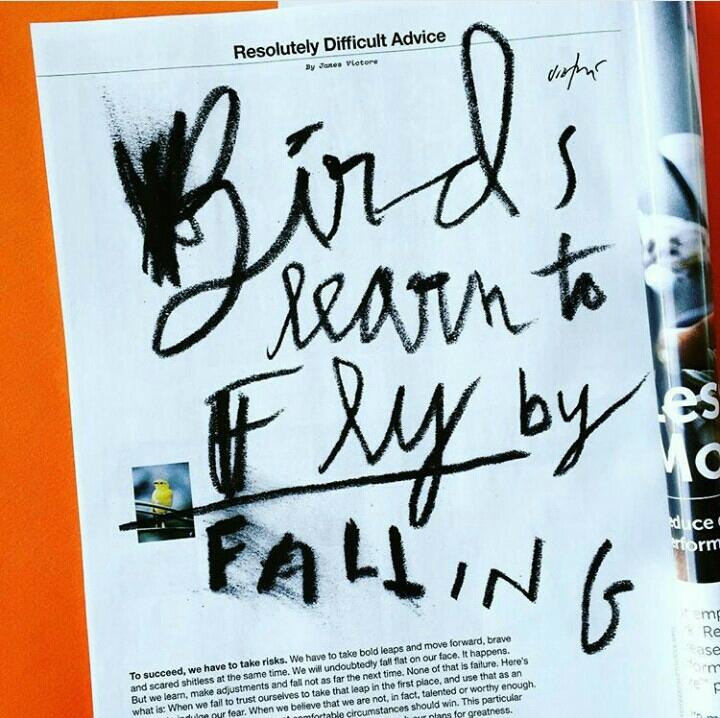 Pássaros aprendem a voar caindo. Por  James Victore .