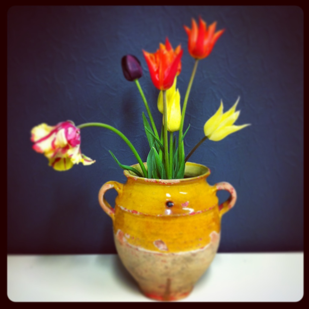 Tulips grown by Robert Pitwell used in his photographic still lifes at Tilt and Shift.Confit pots courtesy of Drew Pritchard - Salvage Hunter! © David Paddy