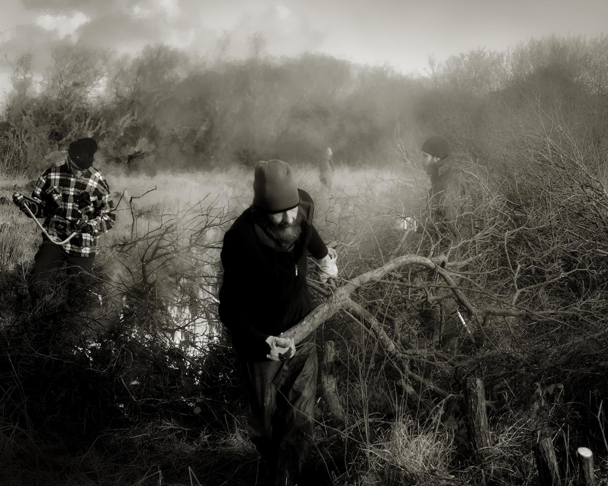 Image © Chris Tancock