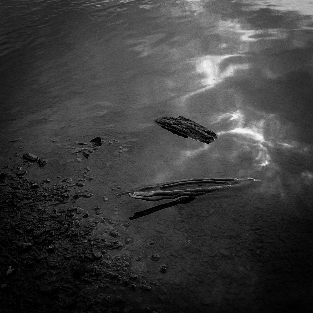 © 2015 David Rice