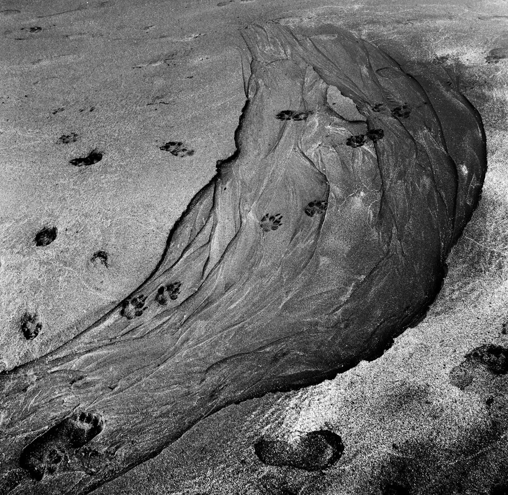 Poppit Sands by Mike Jackson