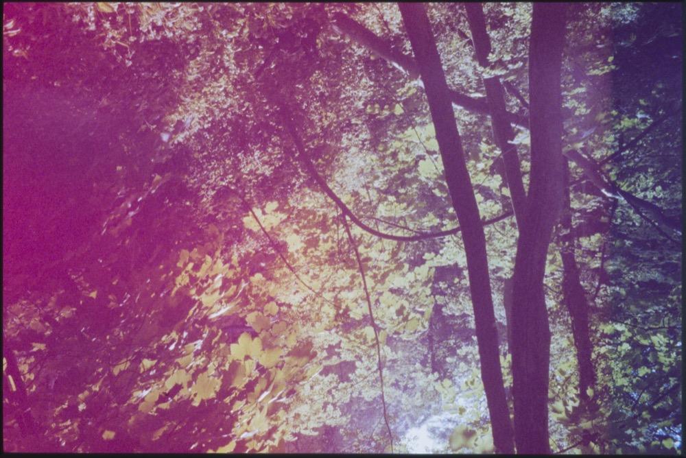 Expired slide film. © Jon Pountney
