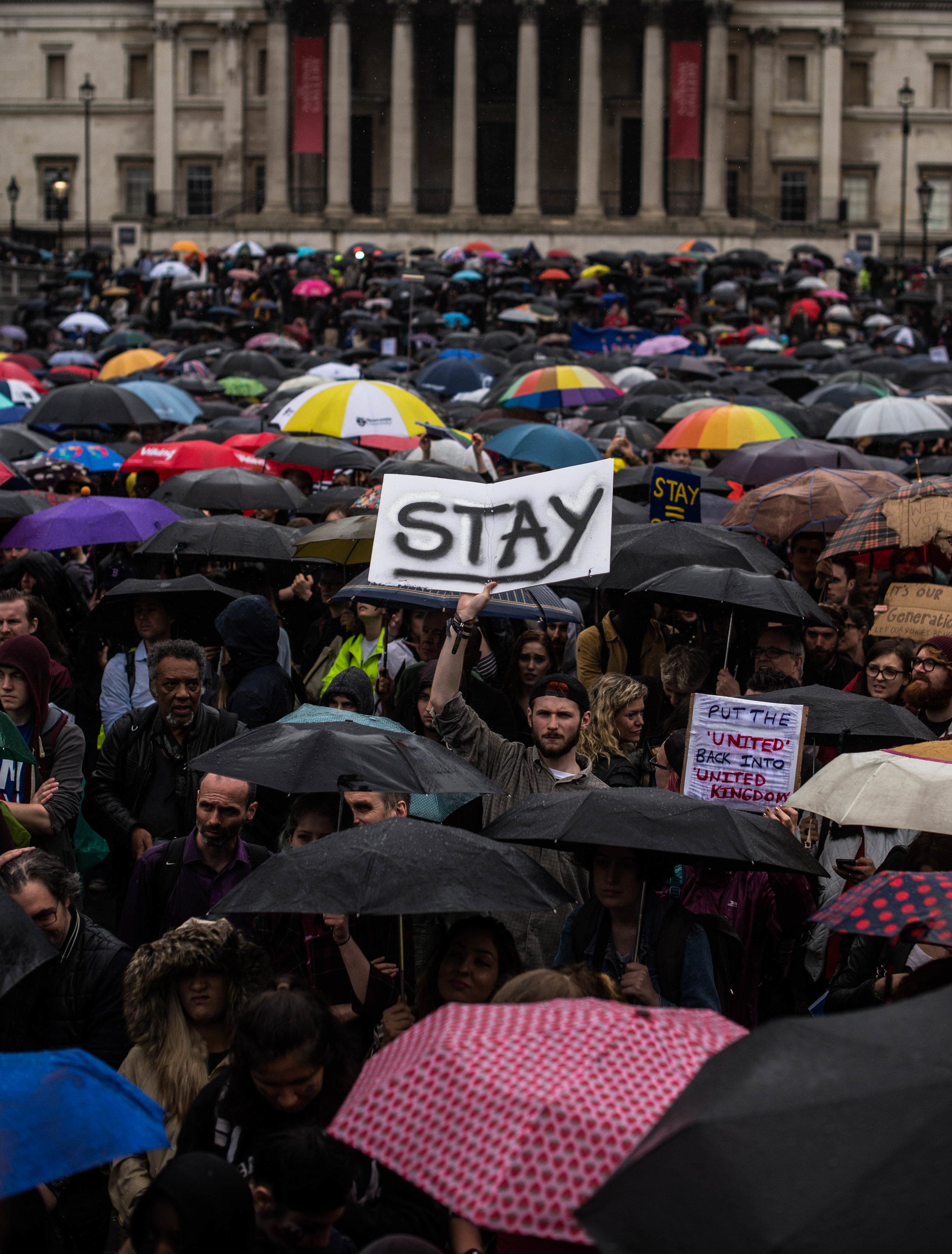 Brexit protest, London. ©Aiyush Pachnanda