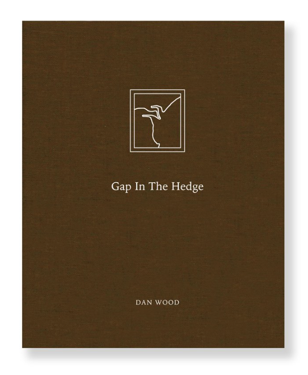 Gap in the Hedge - book cover