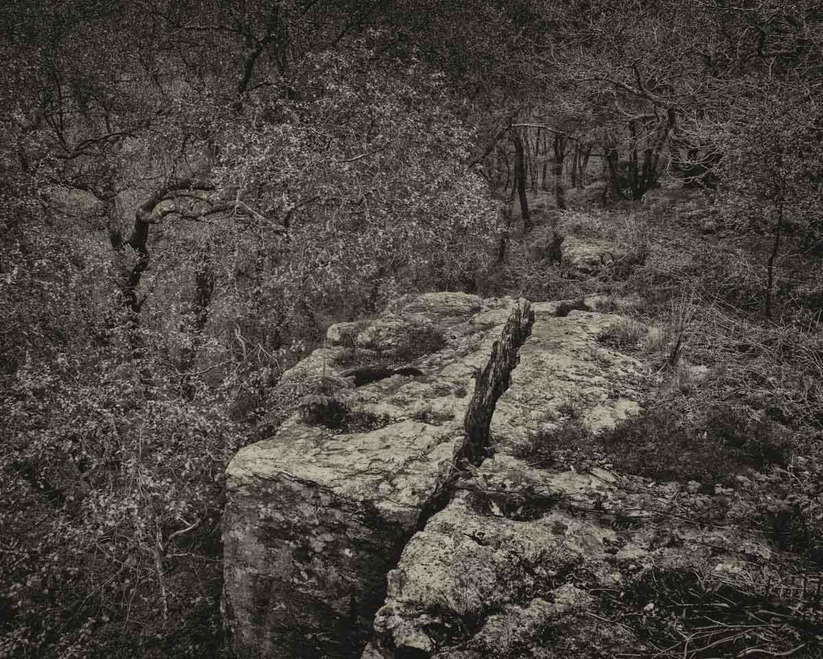 Nedd Valley