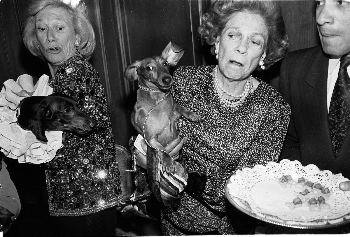 Iris Love and Brooke Astor with Just Desserts and Dolly Astor at a Dachund party. Barbetta, Manhattan, February 1990. © Photograph Copyright Dafydd Jones