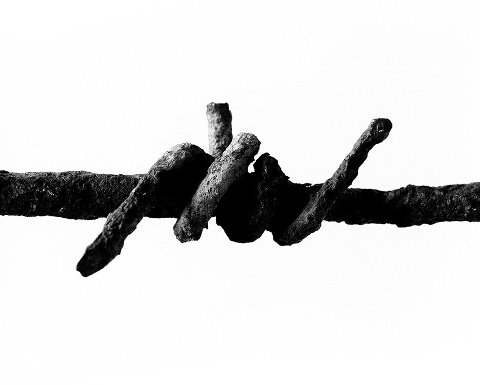 Barbed Wire, 2012
