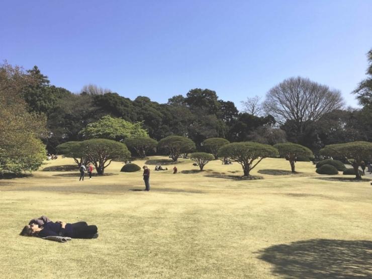 Parque Gyoen no bairro de Shinjuku.