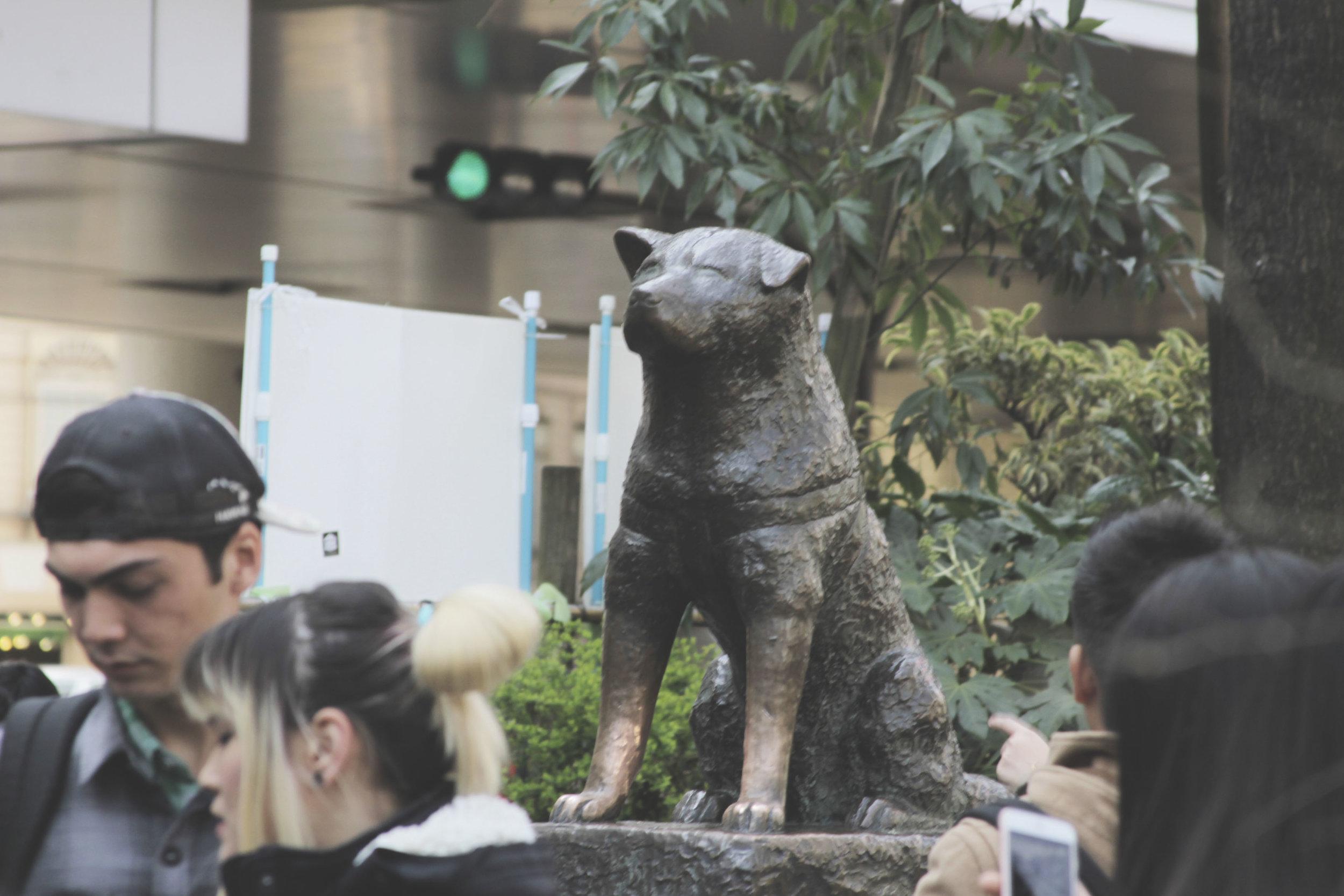 A estátua de um dos cachorros mais famosos do mundo, Hachiko