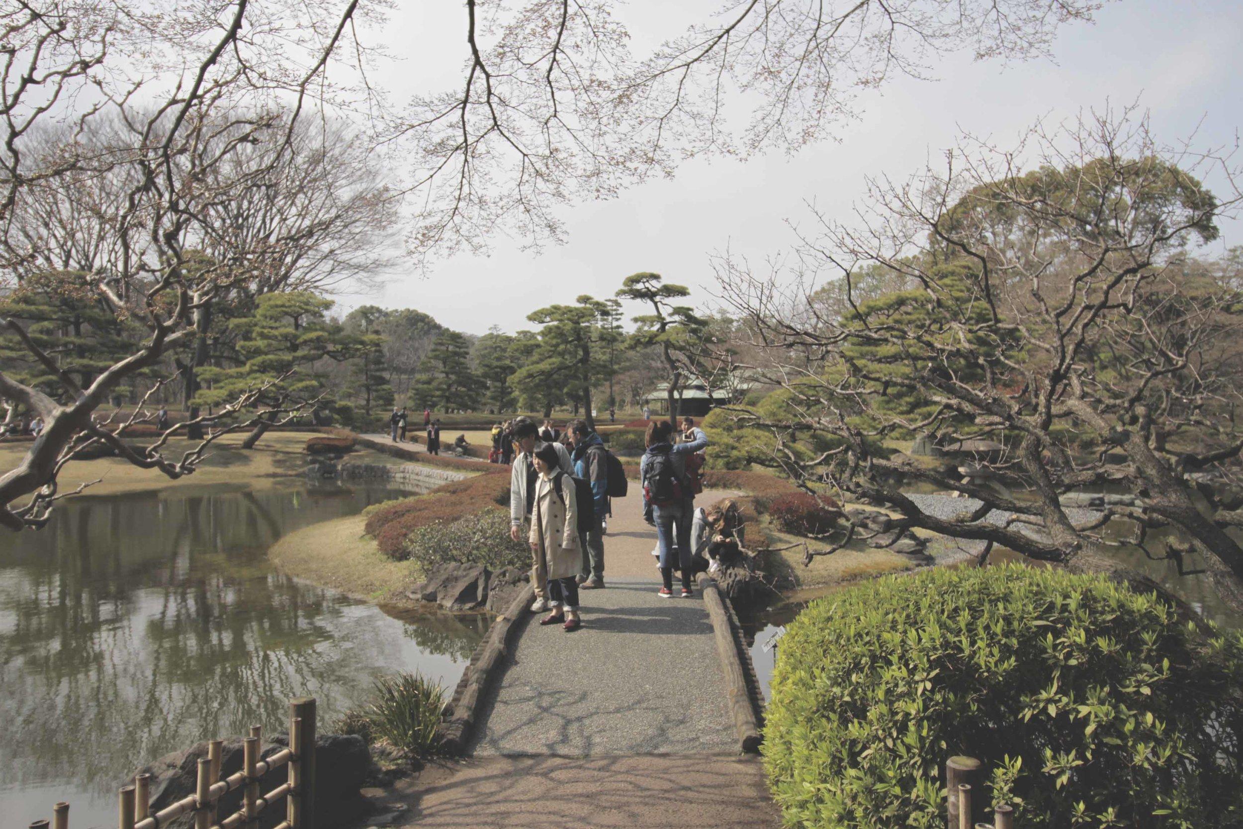 jardim palacio imperial.jpg