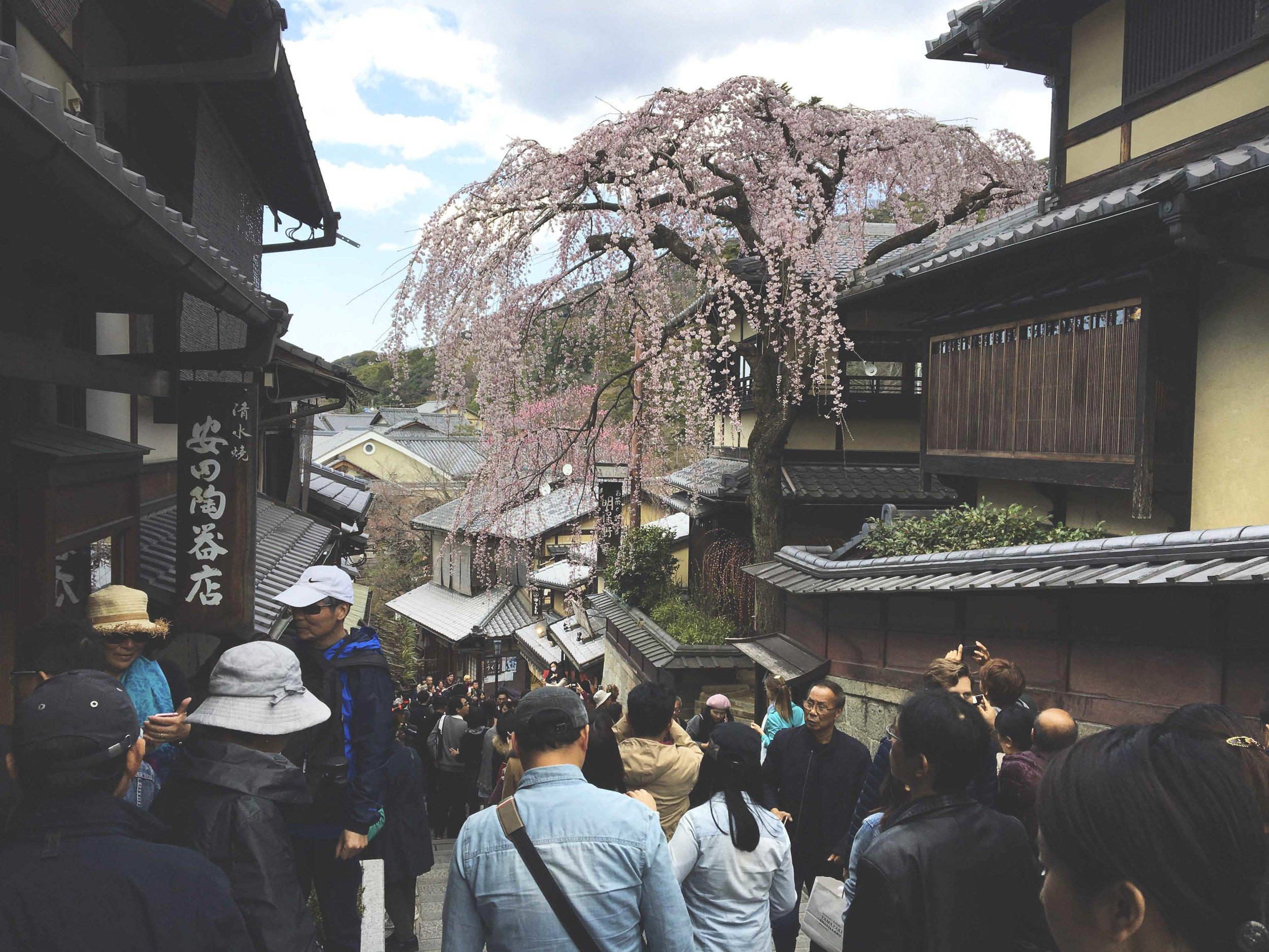 Rua cheia de comércios e pequenos restaurantes próxima ao templo Kiyomizu-Dera, um dos principais de Kyoto.
