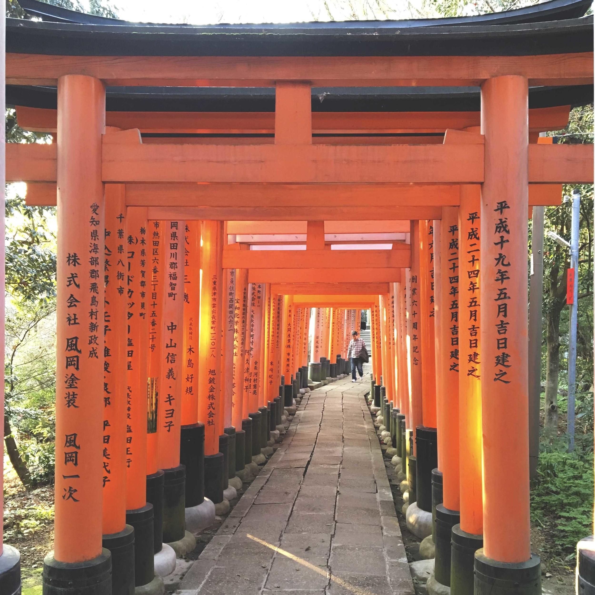 fushimi inari - toriis 2.jpg