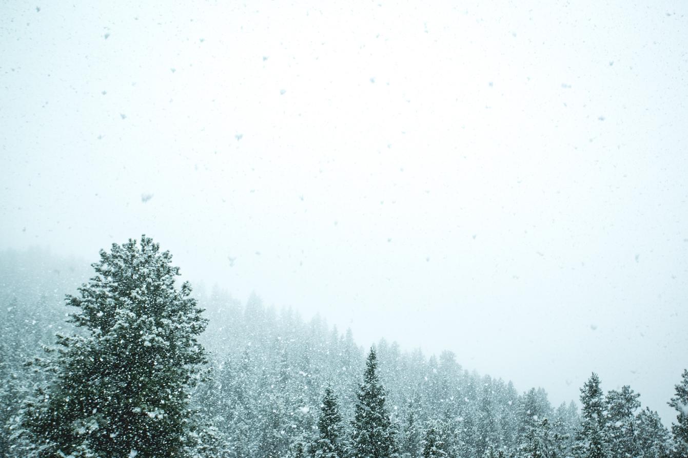 Evergreen-Colorado-Snow