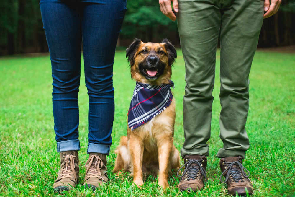If you are doing an engagement session and have a cute dog, I highly recommend you bring your cute dog on your engagement shoot! If you are looking for an engagement photographer in North Carolina, consider hiring Daniel K. Photography!