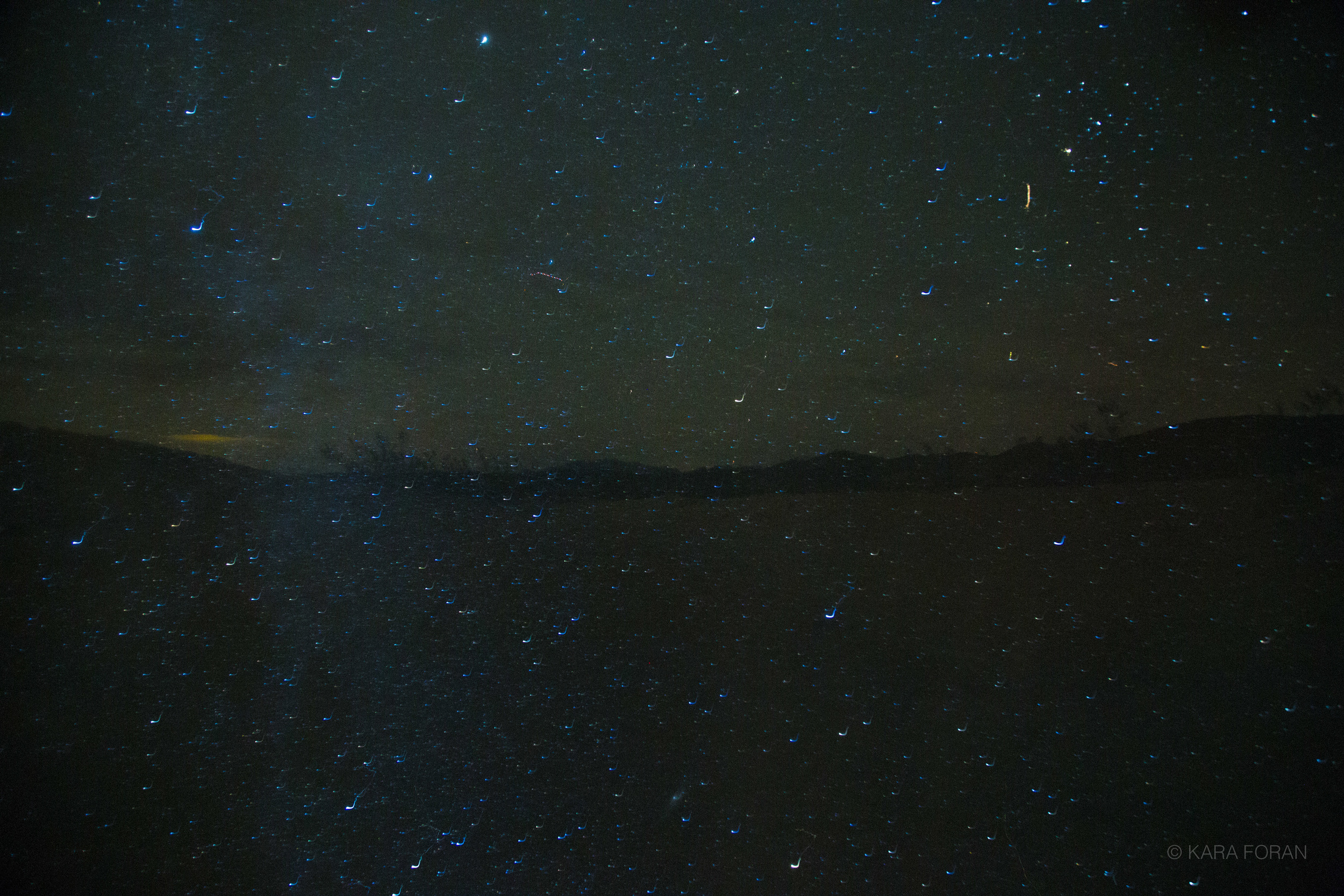 Starry Landscape