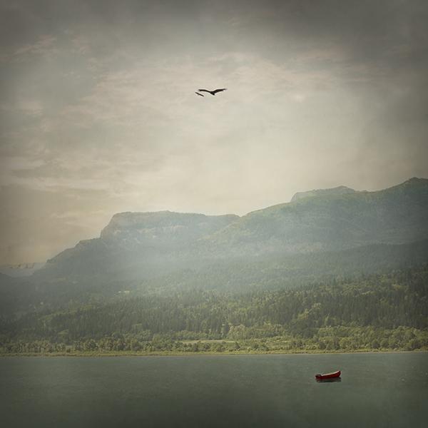 Adrift_web.jpg