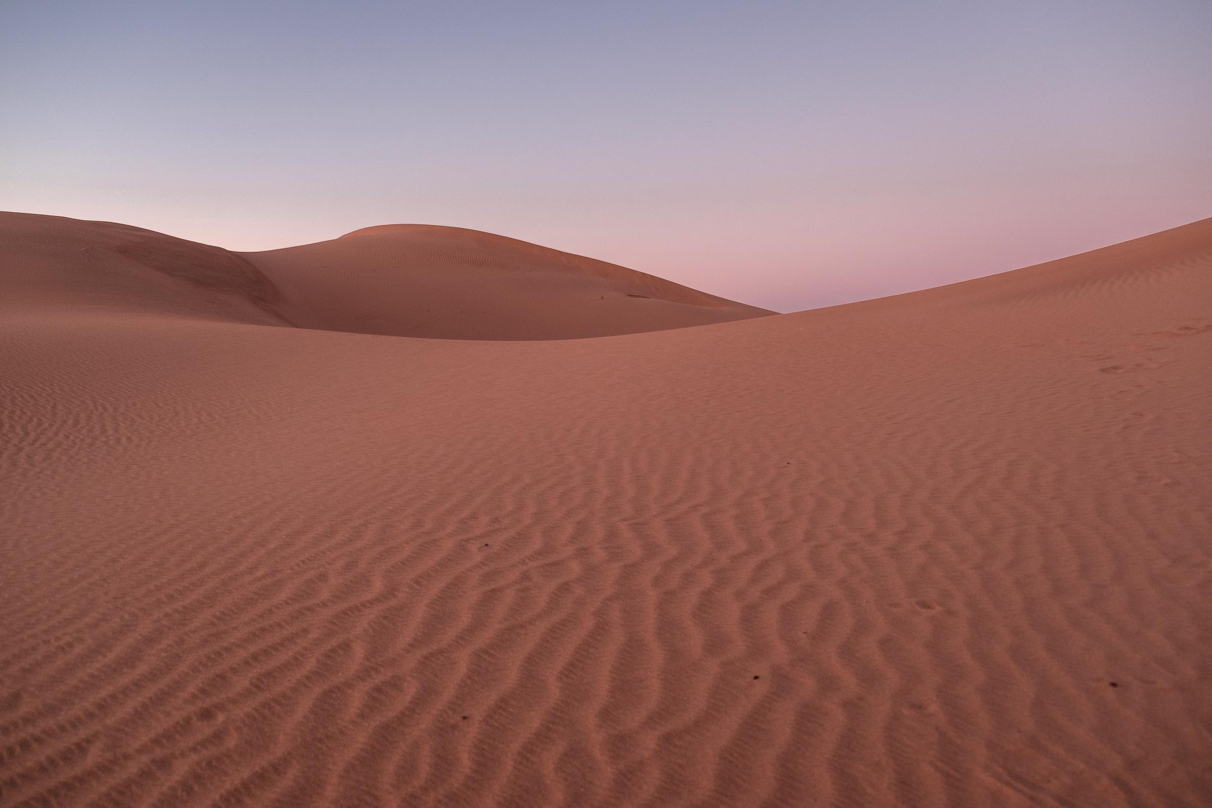 Morning Light on the Dunes